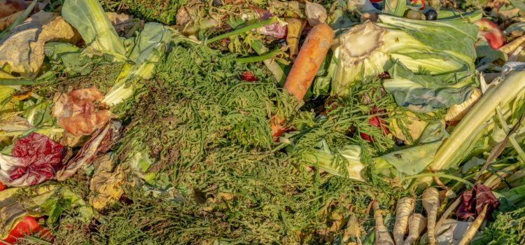 WHAT ARE WE DOING ABOUT ORGANIC WASTE?